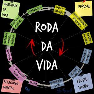 alt=resultado_de_roda_da_vida_no_google